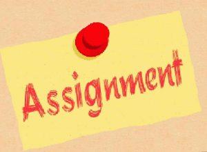 assignment代写